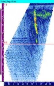 左のSCCのPA-UT画像